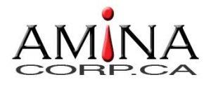 AMINAcorp.ca